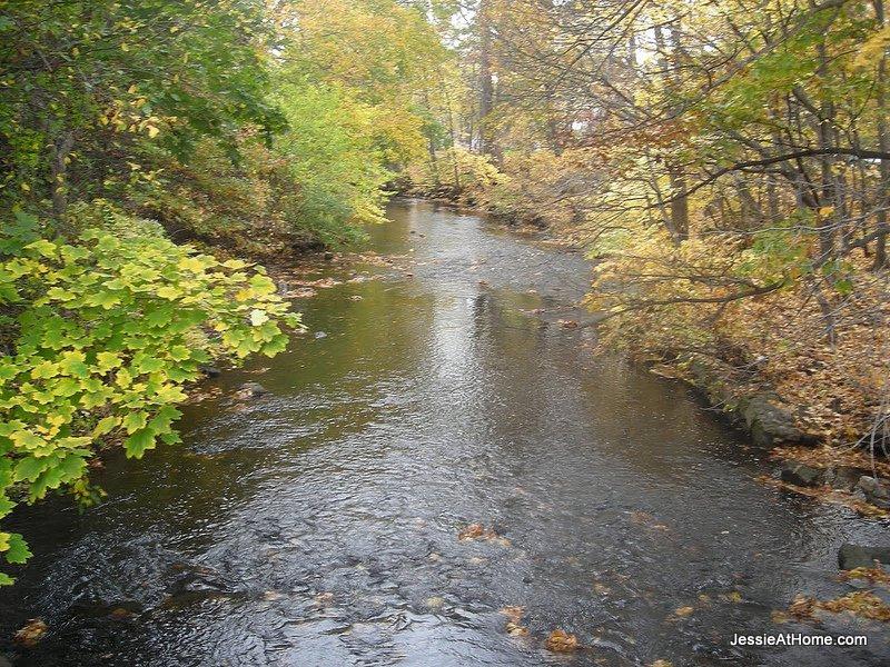 stream-through-the-park