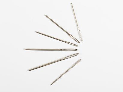 Lion Brand 6 Large-Eye Blunt Needles