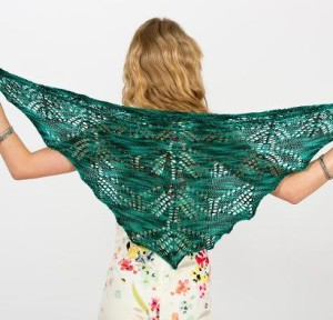 Dragonflies Shawl Kit #KnitKit from @beCraftsy